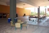 9906 Raintree Drive - Photo 71
