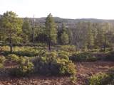 809 Wilderness Trail - Photo 12