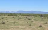 1240 Stuart Trail - Photo 11