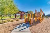 22646 Desert Spoon Drive - Photo 48