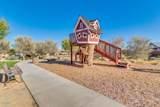 22646 Desert Spoon Drive - Photo 51