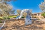 22646 Desert Spoon Drive - Photo 53