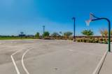 22646 Desert Spoon Drive - Photo 65
