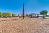22646 Desert Spoon Drive - Photo 69