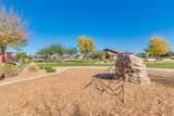 22646 Desert Spoon Drive - Photo 71