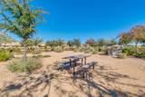 22646 Desert Spoon Drive - Photo 76