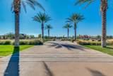 22646 Desert Spoon Drive - Photo 78