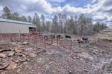 702 Flag Hollow Road - Photo 53