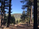 0 Coyote Pass Rd - Photo 1