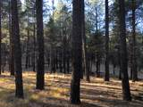 0 Coyote Pass Rd - Photo 2