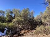 2704 Coyote Mint Circle - Photo 3