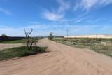 294XX Wolfe Trail - Photo 7