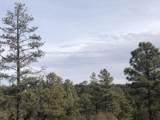 3350 Sawmill Ridge Loop - Photo 1