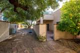 37204 Tranquil Trail - Photo 25