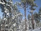 360 Aspen Way - Photo 11