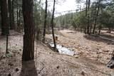 350 Coyote Trail - Photo 28
