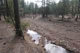 350 Coyote Trail - Photo 29