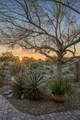 4432 Salvia Drive - Photo 38