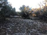 Lot 1567 Lion Canyon Ranch Road - Photo 11
