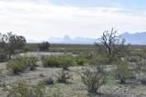 50150 Government Mine Road - Photo 13