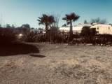 66651 Senora Drive - Photo 15