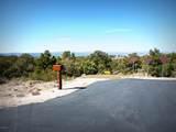 12885 Spiral Dancer Trail - Photo 1