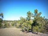 12885 Spiral Dancer Trail - Photo 10