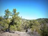 12885 Spiral Dancer Trail - Photo 12