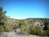12885 Spiral Dancer Trail - Photo 13