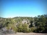 12885 Spiral Dancer Trail - Photo 14