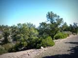 12885 Spiral Dancer Trail - Photo 16
