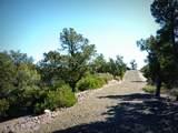 12885 Spiral Dancer Trail - Photo 17