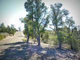 12885 Spiral Dancer Trail - Photo 19