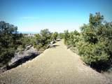 12885 Spiral Dancer Trail - Photo 2