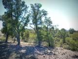 12885 Spiral Dancer Trail - Photo 20