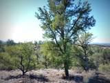 12885 Spiral Dancer Trail - Photo 23
