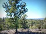 12885 Spiral Dancer Trail - Photo 24