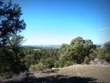 12885 Spiral Dancer Trail - Photo 5