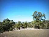 12885 Spiral Dancer Trail - Photo 7