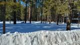 2400 Tall Trees Loop - Photo 2