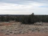 5886 Dark Canyon Drive - Photo 6