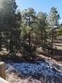 4971 Sunset Ridge Loop - Photo 5