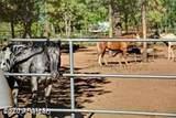 3724 Torreon Court - Photo 30