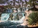 16780 Desert Blossom Way - Photo 71