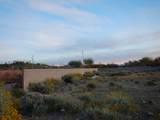 9495 Freedom Trail - Photo 6