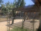 5959 Mendoza Street - Photo 9