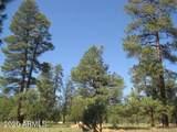 1822 Sugar Pine Drive - Photo 6