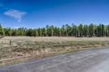 4607 Brackin Ranch Road - Photo 6