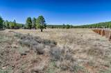 4607 Brackin Ranch Road - Photo 8