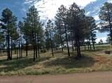 2737 Skyhawk Drive - Photo 2